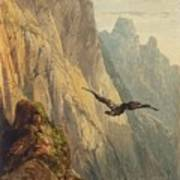 Eagle Circling Before A Cliff Face Art Print