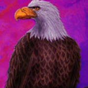 Eagle Crimson Skies Art Print