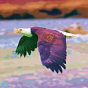 Eagle In Air Art Print