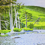 Eagle Lake, Acadia, Maine Art Print