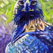 Eagle On Alert Art Print