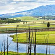 Eagles View, Hayden Valley, Yellowstone Art Print