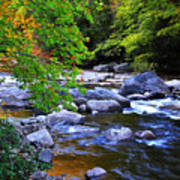 Early Autumn Along Williams River Art Print
