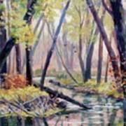 Early Fall On East Canyon Creek Art Print