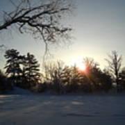 Early January Winter Sunrise Art Print