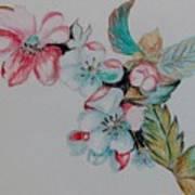 Early Morning Bloom Art Print