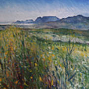 Early Morning Fog In The Foothills Of The Overberg Range Of Mountains Near Heidelberg South Africa. Art Print