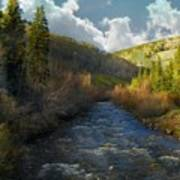 Early Spring Delores River Art Print