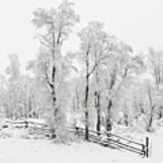 Early Spring Snow Art Print