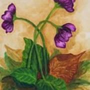 Early Violets Art Print