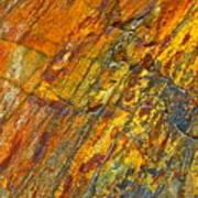 Earths Palette Art Print