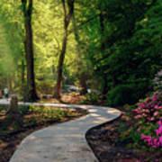 Earyl Morning Walk Through Honor Heights Park Art Print