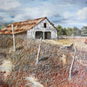 East Texas Barn Art Print