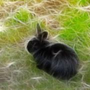 Easter Bunny 3 Art Print