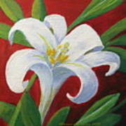 Easter Lily Art Print