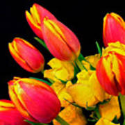Easter Tulips And Roses Art Print