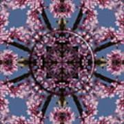 Eastern Red Bud Mandala Art Print
