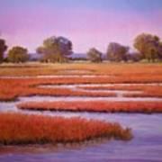 Eastern Shore Marsh Art Print