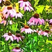 Echinacea Imagined Art Print