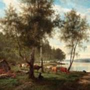 Edvard Bergh, Summer Landscape With Cattle And Birches. Art Print