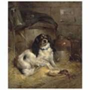 Edwin Douglas 1848-1914 A Cavalier King Charles Spaniel Art Print