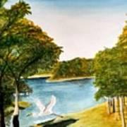 Egret Flying Over Texas Landscape Art Print