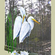 Egrets And Cypress Pond Art Print by Kevin Brant
