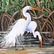 Egrets And Mangroves Art Print
