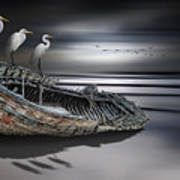 Egrets Watching Art Print