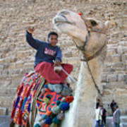 Egypt - Boy With A Camel Art Print