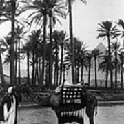 Egypt: Village Art Print