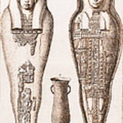 Egyptian Mummy, Illustration Art Print