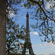 Eiffel Tower Tree Art Print