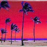 Eight Palms Art Print