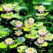Eight #waterlilies Art Print