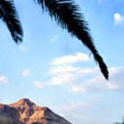 Ein Gedi Oasis In The Judean Desert Art Print