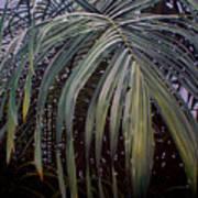 El Calor De La Selva Art Print