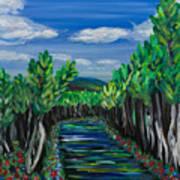 El Camino - El Verano - The Path - Summer Art Print