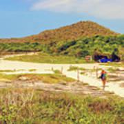 El Garrapatero Beach On Santa Cruz Island In Galapagos. Art Print