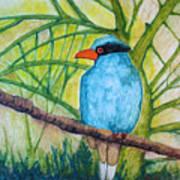 El Pajaro Del Agua Azul  Art Print