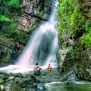 El Yunque Rain Forest Waterfall Art Print
