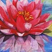 Ela Lily Art Print