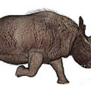 Elasmotherium Art Print