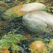 Elbow River Rocks 2 Art Print