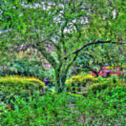 Elderly Man At St. Luke's Garden Art Print