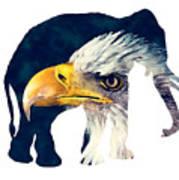 Elephant And Eagle Art Print