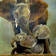 Elephant Familly Art Print