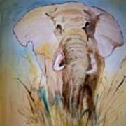 Elephant In The Field Art Print