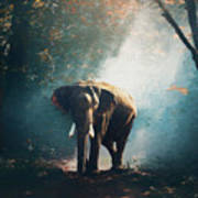Elephant In The Mist - Painting Art Print
