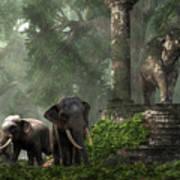 Elephant Kingdom Art Print